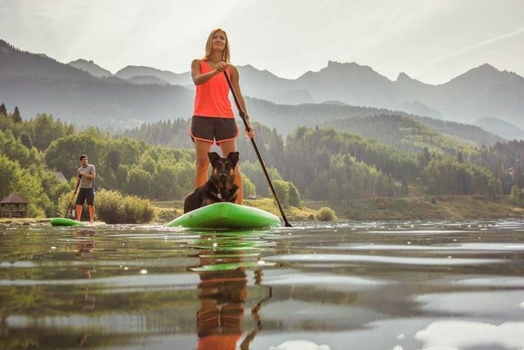 Paddle Boarding With Your Dog: The Ultimate Guide 3