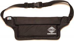 Aqua Quest Waterproof Fanny Pack