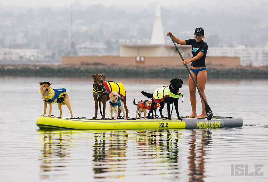 Isle Megalodon Giant Paddle Board Dogs