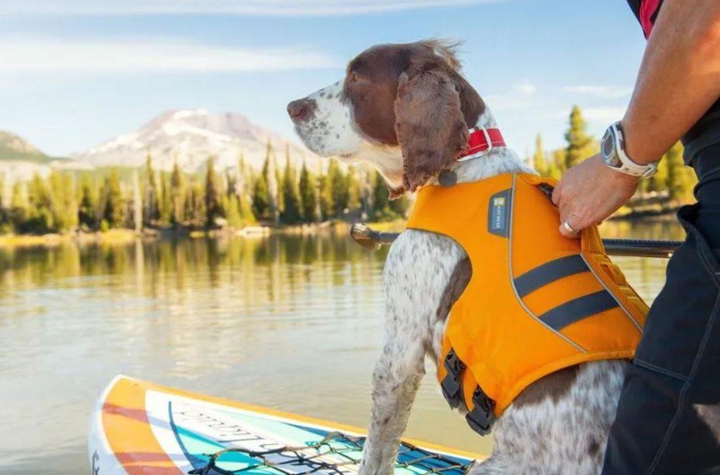 Ruffwear-Floatcoat-Dog Life Jacket