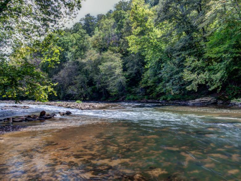Chestatee-River